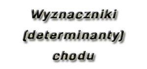 Wyznaczniki (determinanty) chodu