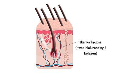 Kwas hialuronowy włosy