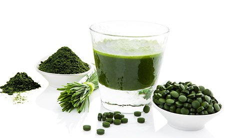 Chlorella - co to jest