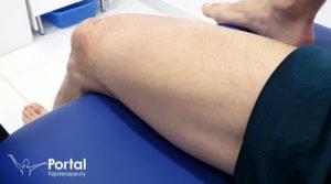 Bóle mięśniowe - fizjoterapia
