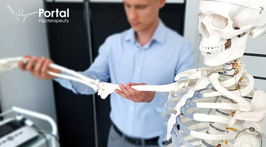 układ kostny