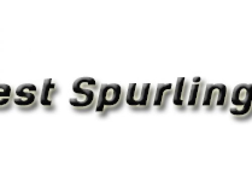 Test Spurlinga