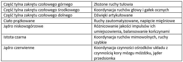 Ośrodki układu pozapiramidowego