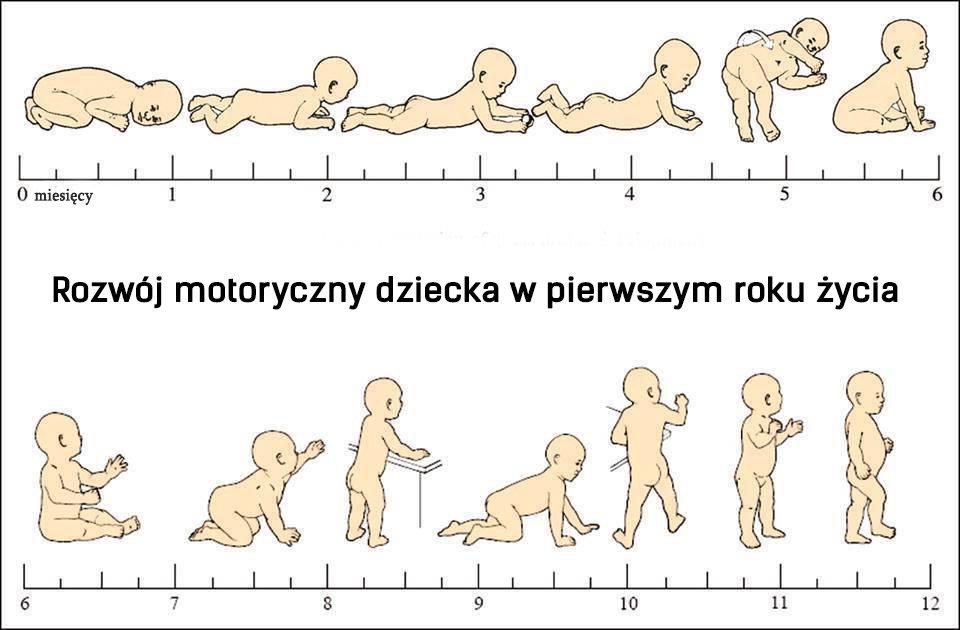 Rozwój motoryczny dziecka