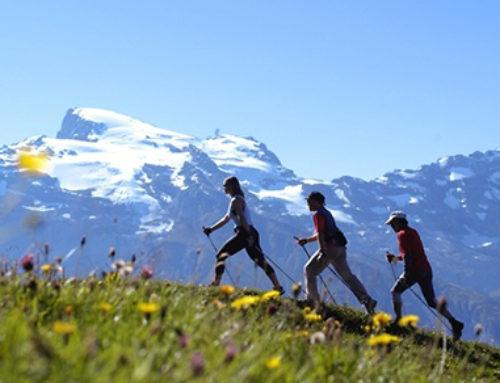 Nordic Walking – aktywność warta zachodu?