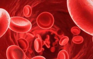 Anemia czym jest i jak sobie z nią radzić