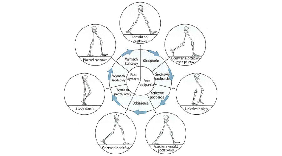 Metody analizy chodu