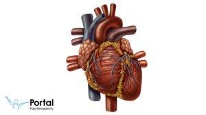 Objętość wyrzutowa serca