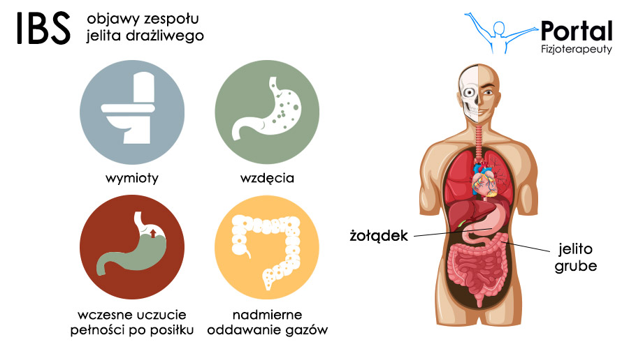 Zespół jelita drażliwego - objawy i leczenie