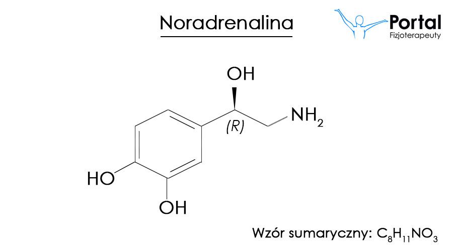 Noradrenalina