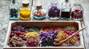 Rośliny lecznicze w leczeniu chorób stawów