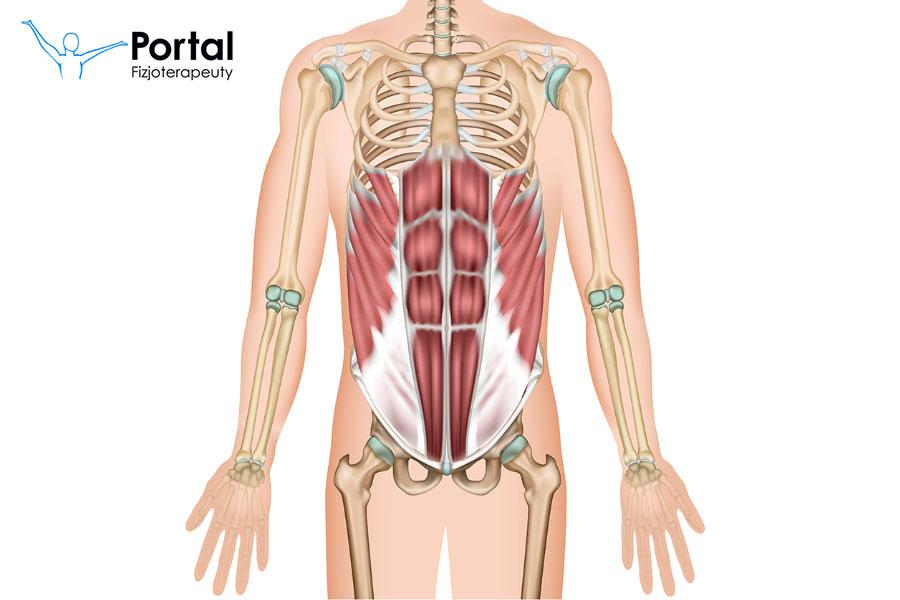 Mięśnie core