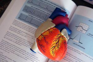 Anatomia bez tajemnic - które podręczniki akademickie wybrać?